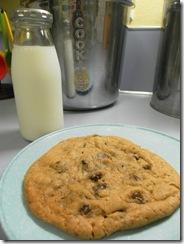 cookie sundae 05