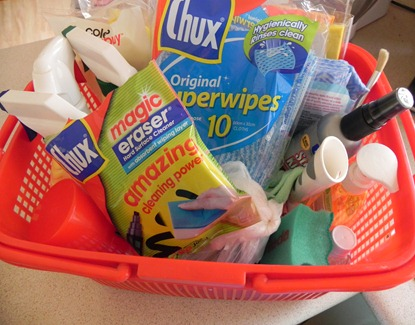 Cleaning Basket