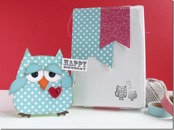 Anna Drai - owl -  birthday boy (1)