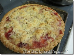 strawberry rhubarb crumb pie - The Backyard Farmwife