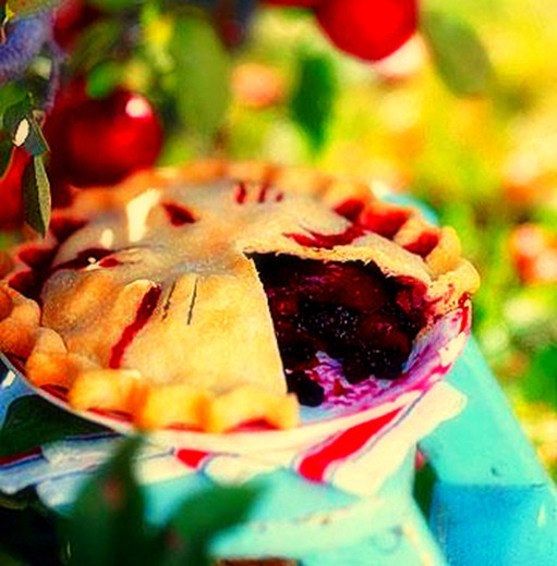 pie_edited