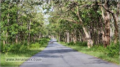 _P6A1714_www.keralapix.com