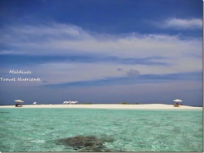 馬爾地夫 野餐島 浮潛 (68)