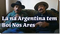 Lá na Argentina tem boi nos ares