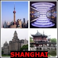 SHANGHAI- Whats The Word Answers