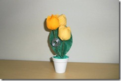 vasinho tulipas