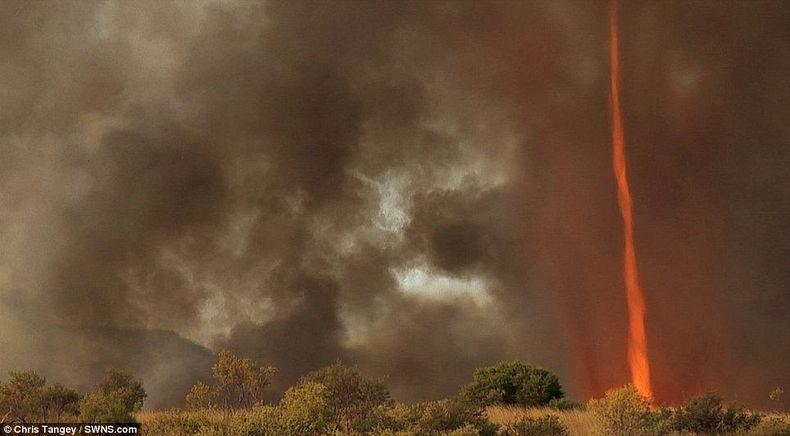 fire-tornadoes-8