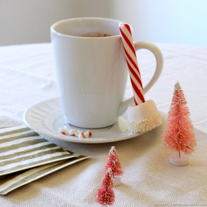 Marshmallow & Peppermint Stir Sticks via homework (8)