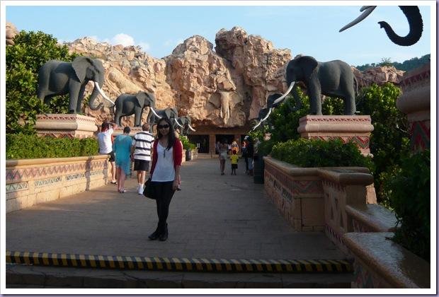 Johannesburg-África-do-Sul-Sun-City-Elefantes