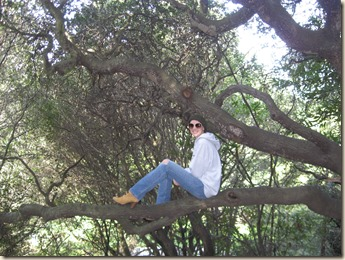 Aurelia in a tree at Cordinices Park 2010