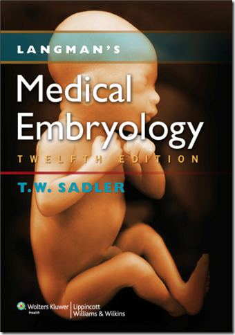 langman's-medical-embriology