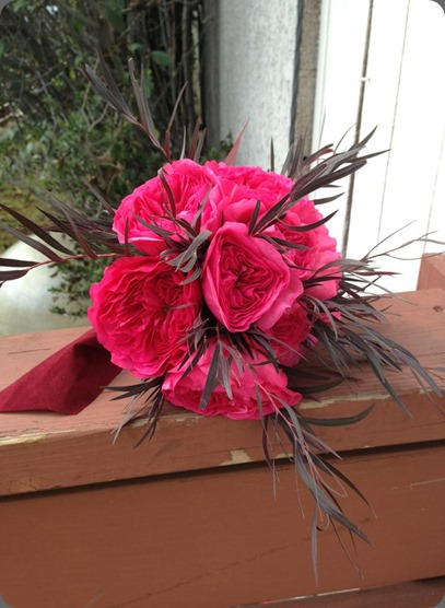 agonis 251713_495273693841664_1806994823_n pink Baronesse garden rose Kaleco Design