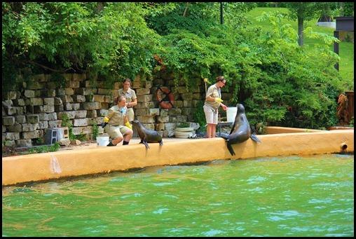 Zoo4 399