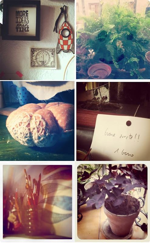 collage mia
