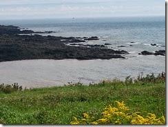 Fundy coast 1  9-3-2014 2-04-02 PM