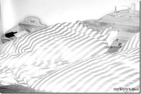 vi_20121028_bed