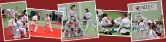 Näytä Genelec-shiai 12.11.2011