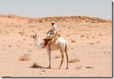 Oporrak 2011 - Jordania ,-  Wadi Rum, 22 de Septiembre  42