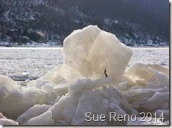 SueReno_SusquehannaRiverIce_Feb2014_Image9
