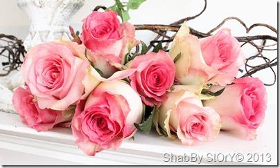ivy roses-019aweb