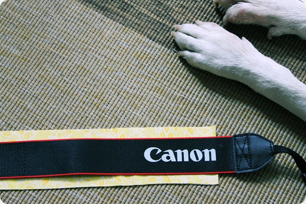 fabric jellyroll camera strap easy diy