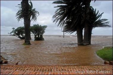 Diego Ituño Estévez. Trouville, inundado