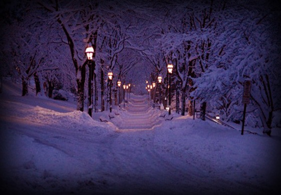 winter,lantern,lights,night,snow-9a7fa001e77e0387a53f21e7f074b223_h_large