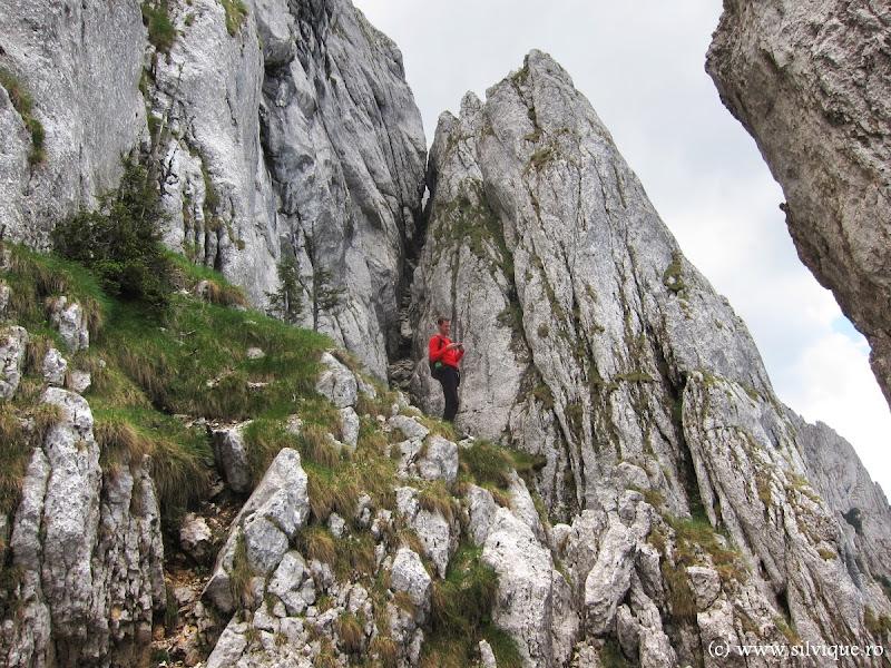 2013.06.16 - Piatra Craiului - Canionul Anghelide si Braul de Mijloc