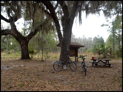 Gainesville to Hawthorn Bike Trail 175