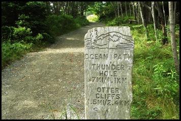 Plan C-Town walk 005