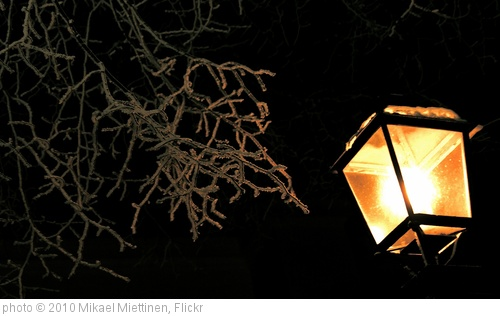 '#453 Winter light' photo (c) 2010, Mikael Miettinen - license: http://creativecommons.org/licenses/by/2.0/