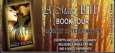 Blog Tour AMB