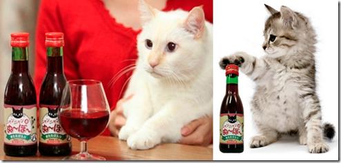 branding; Vino para gatos, japones; el color comunica