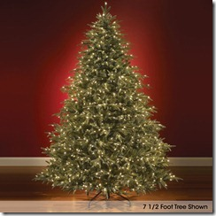 The World's Best Prelit Noble Fir