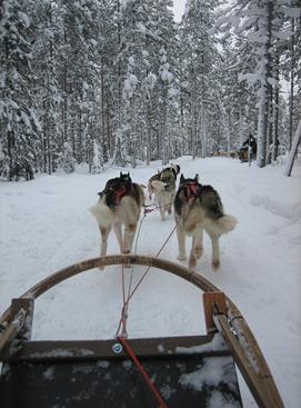 Finland 418
