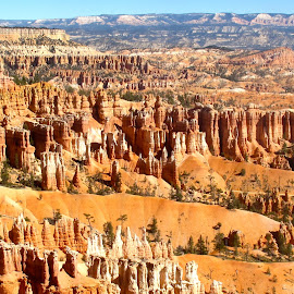 IMG_4524 by Jim Antonicello - Landscapes Mountains & Hills ( hills, utah, rock formation, bryce canyon )