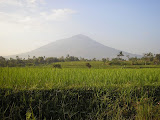 Cikuray from near Garut (Daniel Quinn, July 2009)