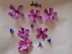 Tarjetas con flores secas 5
