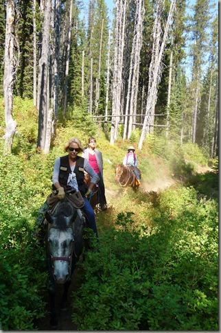 Horse trip 057
