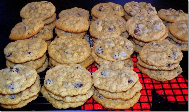 SRC-Oatmeal CC Raisin Cookies