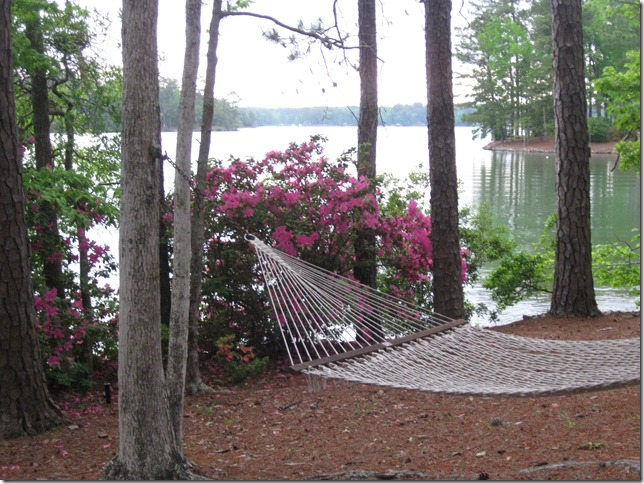 lake may 2010 023