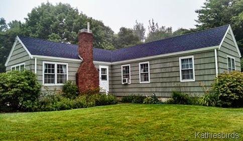 3. 7-28-14 cottage