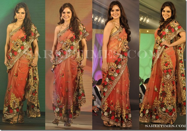 Neha_Dhupia_Embroidery_Saree