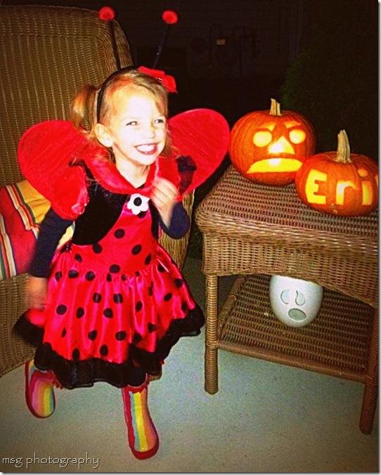 erin halloween ladybug