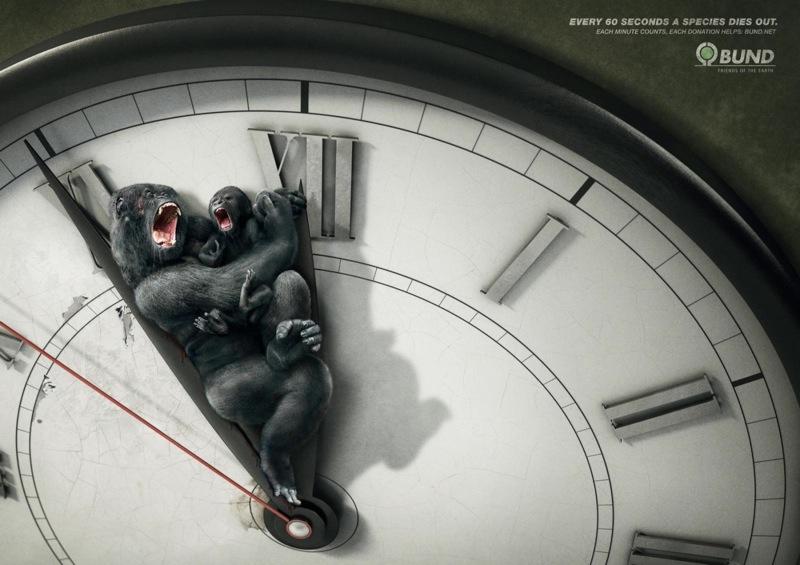 Environmental awareness gorilla