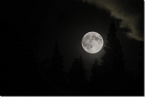Full Moon Fake