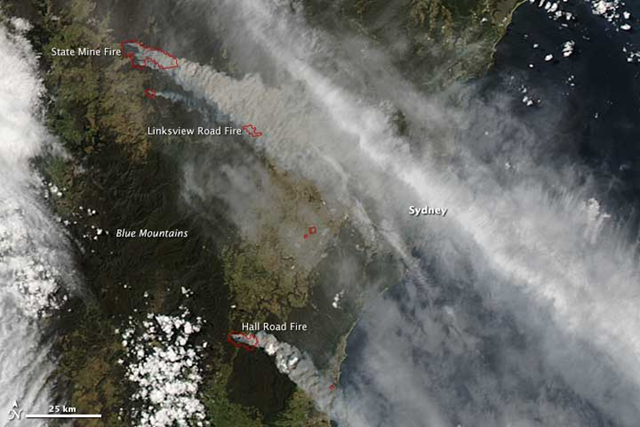 NASA's Aqua satellite acquired this image on 17 October 2013. Fires are outlined in red; to the east, smoke pollution was a problem in populated coastal communities. The densest plume hangs directly over Sydney, though the brighter white streak is probably a cloud. Photo: Jeff Schmaltz, LANCE/EOSDIS MODIS Rapid Response Team at NASA GSFC