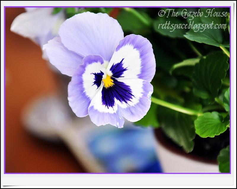 Garden Party 024, Aprils notecard