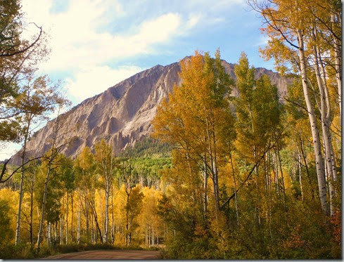 Aspens and Rock Mountain