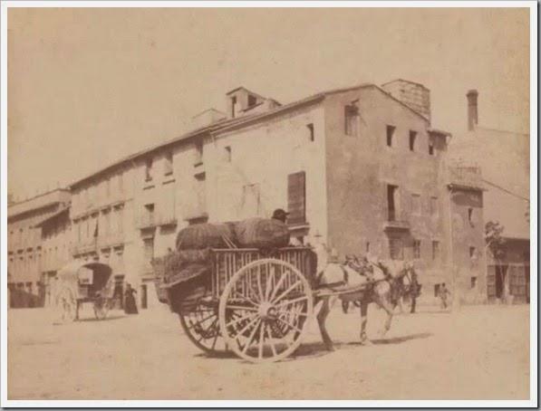 1900 el caballo en la ciudad